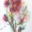 fleur opaque